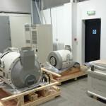 new-plant-2-150x150